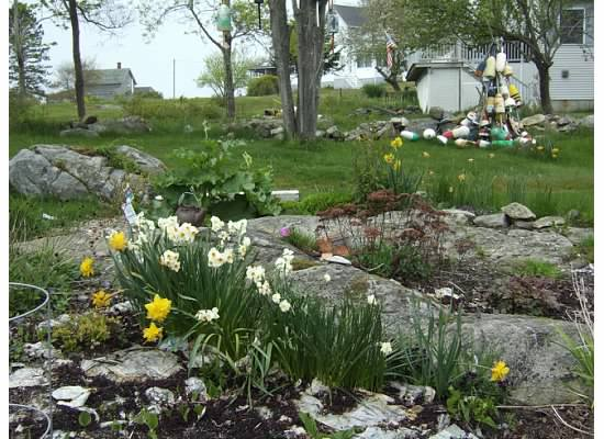 spring on Long Island 10